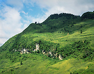 Vibrant green hillside along the trail between Bac Ha and Xin Man, Vietnam, Southeast Asia