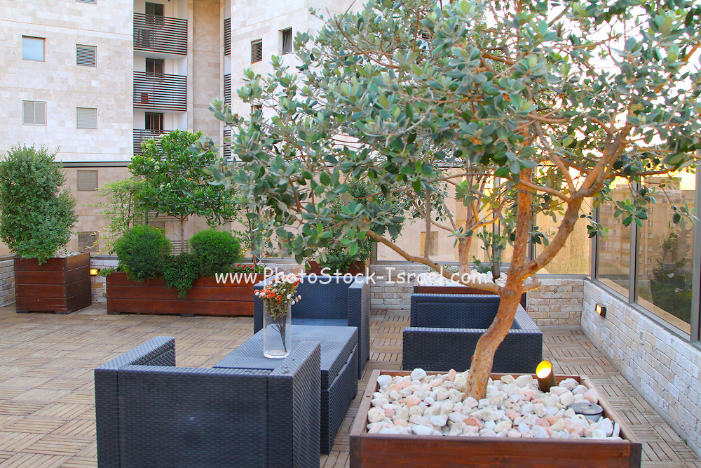 A penthouse roof garden Phoitographed in Israel, Herzliya