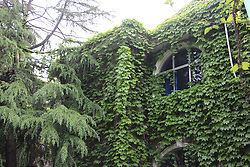 April 16, 2018 - Xiaogan, Xiaogan, China - Xiaogan, CHINA-16th April 2018: Photo shows ivy-covered residential buildings in Xiaogan, central China's Hubei Province. (Credit Image: © SIPA Asia via ZUMA Wire)