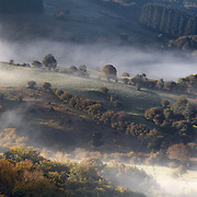 Autumn landscape with mist and colors in the trees, France