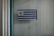 La bandiera dell'Uruguay. Montevideo, 13 dicembre 2015.  Christian Mantuano / OneShot