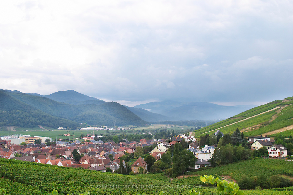 vineyard view over village from brand gc turckheim alsace france