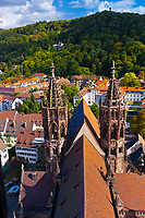 Overview, Munster (Cathedral of Our Lady), Freiburg, Baden-Württemberg, Germany