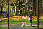 Leo Anders practices balancing on a slackline on Saturday, Oct. 17, 2020 at City Park in Ketchikan, Alaska. Leo is part of the Ketchikan Volunteer Rescue Squad, which later hosted a pumpkin patch in the park.