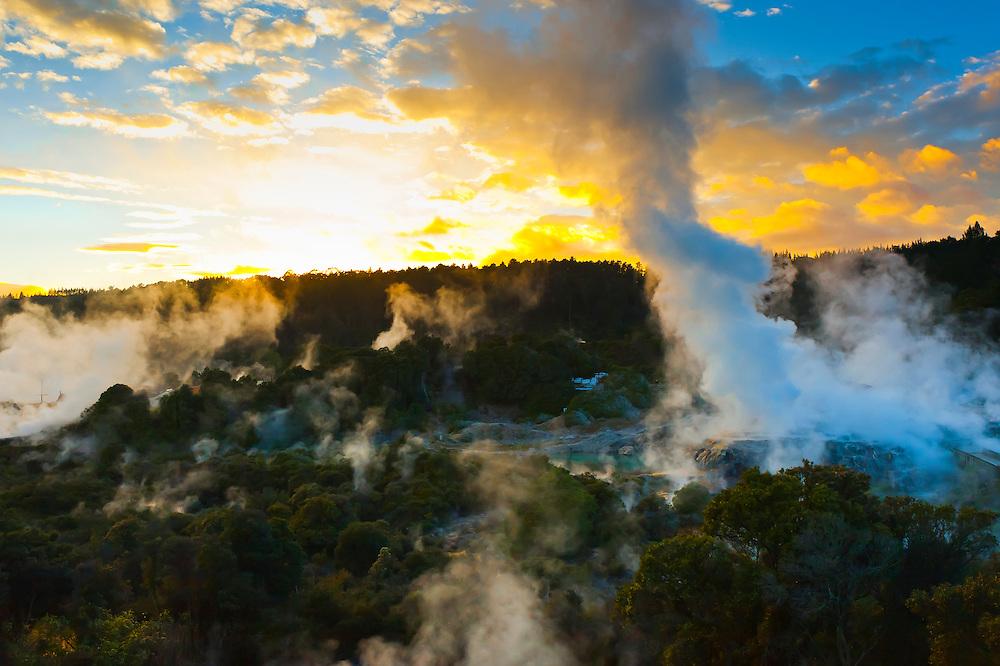 Steam rising at sunrise at Te Puia (New Zealand Maori Arts & Crafts Institute), Whakarewarewa Thermal Valley, Rotorua, North Island, New Zealand.