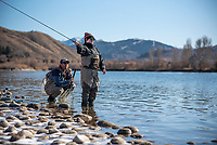 Spencer Morton, owner of the Jackson Hole Fly Fishing School, watches Josh Heineken cast Friday while fishing on the Snake River south of Jackson.