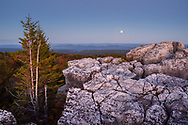 The near full moon appears across the distant autumn horizon above North Fork Mountain amid the flagged pine and rocky outcrops of the imposing Dolly Sods landscapes.