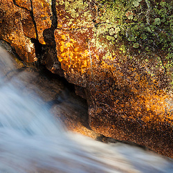 Detail of Zealand Falls in the White Mountain National Forest, New Hampshire.