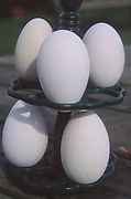 ADFTJ9 Goose eggs on a stand
