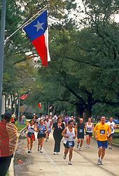 Stock photo of marathon participants running along oak tree lined streets