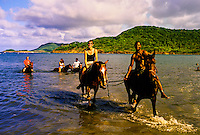 Horseback riding to Cas en Bas beach (with International Riding Stables, Gros Inlet), island of St. Lucia