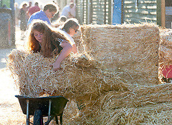 © Licensed to London News Pictures. 24/07/2018. Llanelwedd, UK. People in the stable area scramble for the new delivery of straw and hay on the second day of the Royal Welsh Show. The Royal Welsh Agricultural Show is hailed as the largest & most prestigious event of its kind in Europe. In excess of 200,000 visitors are expected this week over the four day show period. The first ever show was at Aberystwyth in 1904 and attracted 442 livestock entries. Photo credit: Graham M. Lawrence/LNP