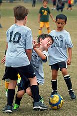 Fall Soccer 2013