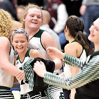 2.28.2018 Elyria Catholic vs. Wellington Girls Basketball