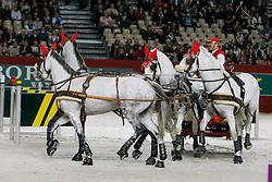 Würgler Daniel<br /> Favory Pastora, Siglavy Capriola X 2, Attila XI, Suleika IX<br /> CAI-W Geneve 2008<br /> Photo © Hippo Foto