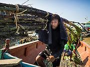 27 OCTOBER 2015 - YANGON, MYANMAR:  Men unload sugarcane grown in rural Myanmar at a pier along the Twante Canal in Yangon.   PHOTO BY JACK KURTZ