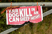 Battered warning sign Your Dog Can Kill Sheep in an Instant, UK
