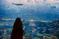 Emirats Arabes Unis, Dubai, Centre commercial Mall of the Emirates, Aquarium // United Arab Emirates, Dubai, Mall of the Emirates commercial center, Aquarium