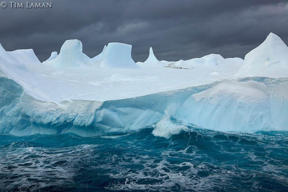 Iceberg with Adelie Penguins (Pygoscelis adeliae) in the distance.