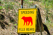 Road sign warning that speeding kills bears, Yosemite National Park, California USA