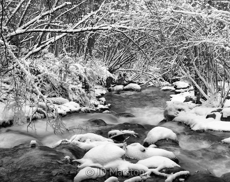First Snow, Crestone Creek, Colorado