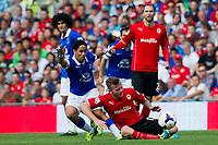 Football - 2013 / 2014 Premier League - Cardiff City vs. Everton<br /> aron gunnarson & sylvain distin clash.<br /> pic-winston bynorth/colorsport