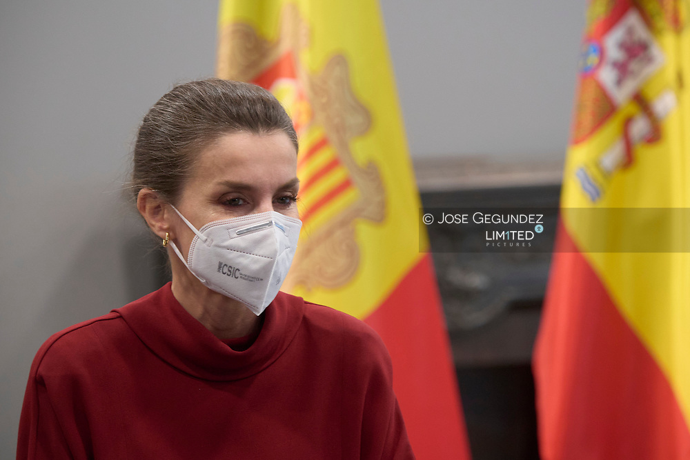 Queen Letizia of Spain attends meeting about the inclusion model for students with disabilities in the three educational models in Andorra during 2 day State visit to Principality of Andorra at Andorra Park Hotel  on March 25, 2021 in Andorra la Vella, Principality of Andorra  <br /> The two day trip marks the first visit to Andorra since King Felipe's enthronement and is also the first foreign trip since the begin of the Coronavirus pandemic.