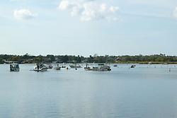 Kings Bay, Crystal River
