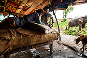 11th September 2014, Yamuna River, New Delhi, India. Elephant handlers wait-out a monsoon shower inside their lean-to shelter near the ITO bridge in New Delhi, India on the 11th September 2014<br />