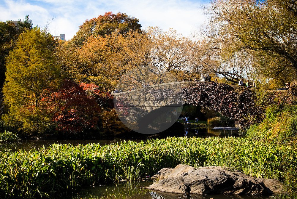 Autumn colors and Gapstow bridge in Central Park in New York City.
