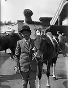 """04/08/1960<br /> 08/04/1960<br /> 04 August 1960<br /> R.D.S Horse Show Dublin (Thursday). Master Norman Aston (aged11) who tied with himself in Competition """"E"""" for children over a special course, pictured with his horse """"Bambi""""."""