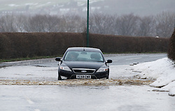 © Licensed to London News Pictures. 27/01/2013..Cleveland, England, UK..Following the recent snowfall a fast thaw through the night brought heavy flooding to some parts of Cleveland and North Yorkshire with many roads closed...A cat passes through flood water on the main road into North Skelton in Cleveland...Photo credit : Ian Forsyth/LNP