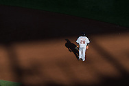 Prince Fielder #28 of the Detroit Tigers plays 1st base during a game against the Minnesota Twins on June 15, 2013 at Target Field in Minneapolis, Minnesota.  The Twins defeated the Tigers 6 to 3.  Photo: Ben Krause