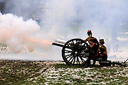 Smoke filled the air as the 41 gun salute braved freezing conditions in Green Park