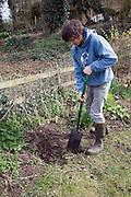 Model released teenage boy digging hole in garden