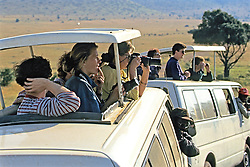 Tourists On Safari