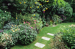 Curving lawn and borders in a narrow, small town garden. Stepping stones set into lawn