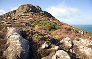 Carn Llidi tor, St David's Head, Pembrokeshire, Wales
