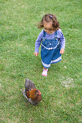 Little girl chasing a chicken on a visit to a city farm,