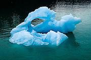 Sapphire Blue Icebergs in Tracy Arm Fjord Alaska