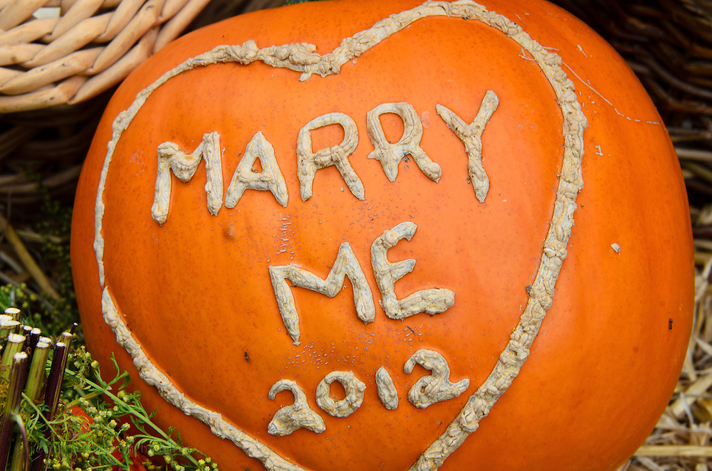 """Pumpkin carved with the words """"Marry Me"""" at the Common Ground Fair, Maine."""