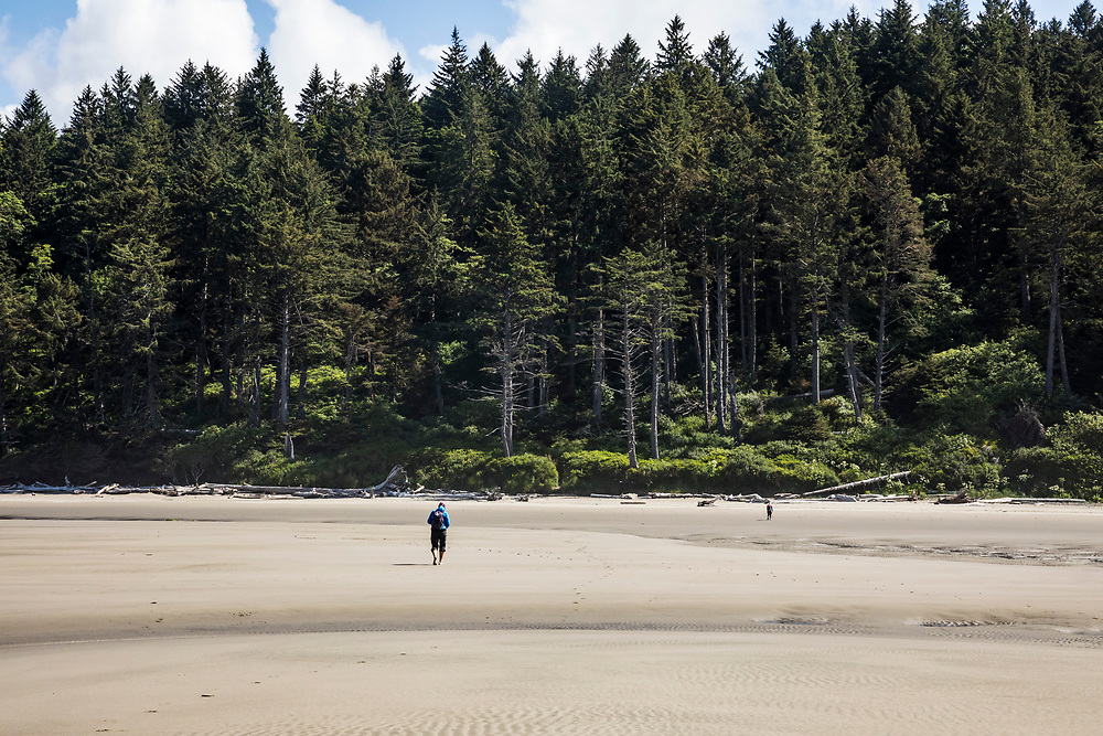 Low tide at 2nd beach, Olympic National Park, Washington, USA.