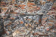 Coastal erosion and management, East Lane, Bawdsey, Suffolk, England. Close up of London Clay strata.