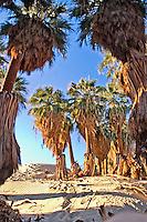 Coachella Valley CA