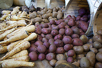 Organic root vegetables on sale at St. Lawrence Market in Toronto, Ontario, Canada.