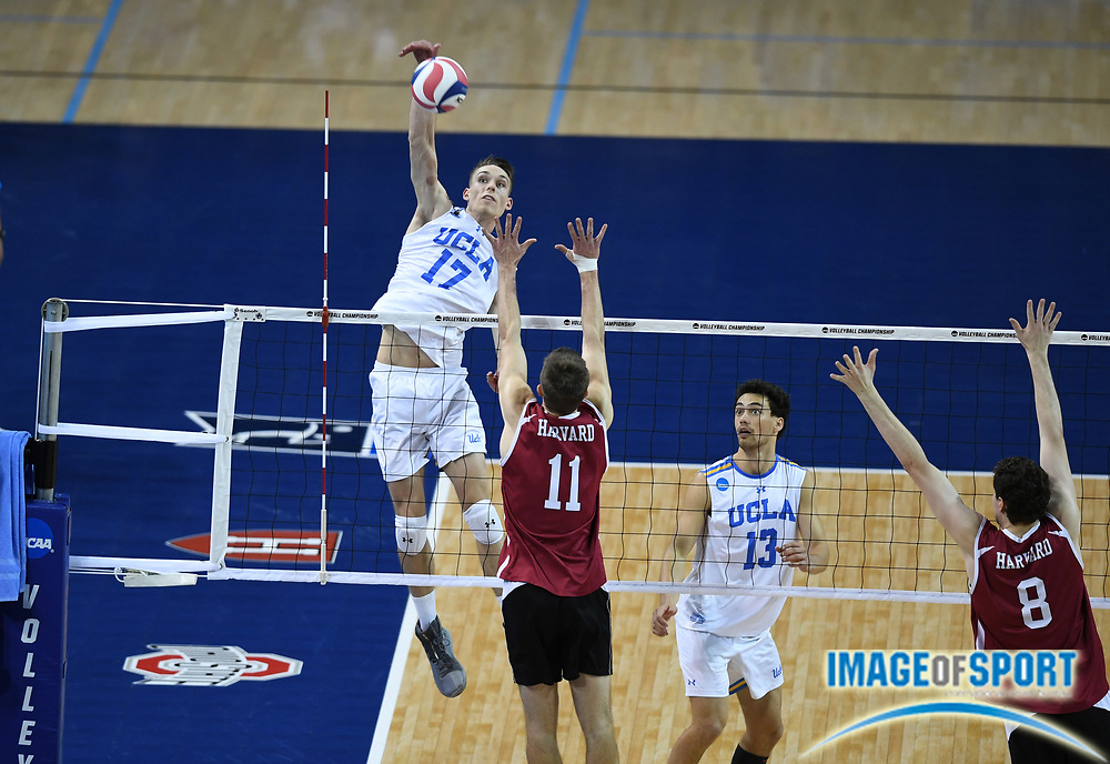 UCLA Bruins opposite hitter Christian Hessenauer (17) spikes the ball as Harvard Crimson outside hitter Erik Johnsson (11) and middle blocker Trevor Dow (8) defend during the opening round game of the NCAA college volleyball championship in Los Angeles, Tuesday, May 1, 2018. UCLA defeated Harvard 23-25, 25-21, 25-11, 25-21.