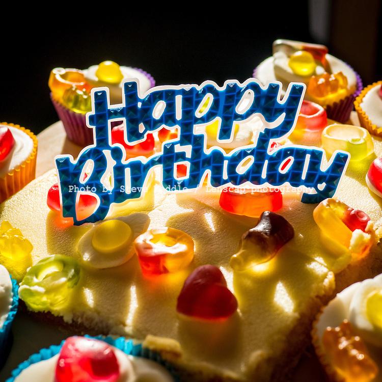 Close-up of Birthday Cake - Jan 2014.