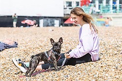 © Licensed to London News Pictures. 25/05/2019. Brighton, UK.  A young woman takes to the beach with her puppy to take advantage of the occasional rays of sunshine on the May Bank holiday Saturday. Photo credit: Hugo Michiels/LNP