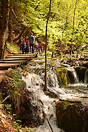 Tourists and walkers by a cascade. Plitvice ( Plitvika ) Lakes National Park, Croatia. A UNESCO World Heritage Site .<br /> <br /> Visit our CROATIA HISTORIC SITES PHOTO COLLECTIONS for more photos to download or buy as wall art prints https://funkystock.photoshelter.com/gallery-collection/Pictures-Images-of-Croatia-Photos-of-Croatian-Historic-Landmark-Sites/C0000cY_V8uDo_ls