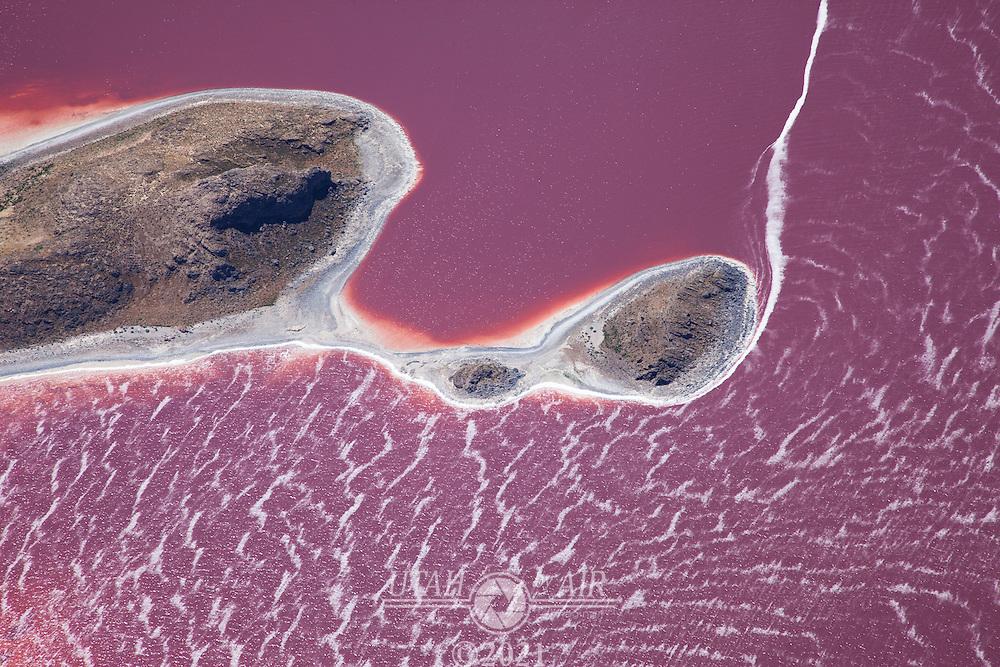 Cub Island on the Great Salt Lake during an algae bloom